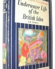 Underwater Life of the British Isles Darnell Ward Lock 1960